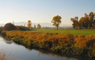 Image of King Ranch Golf Course Frenchtown MT