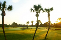 Photo of Holiday Golf Club Panama City Beach FL