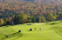 Image of Tater Hill Golf Club Chester, VT
