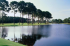 Image of Indian Bayou Golf and Country Club Destin, FL