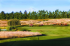 Image of Langdon Farms Golf Club Aurora, OR