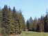 Image of Lake Padden Golf Course Bellingham, WA