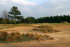 Image of Pine Dunes Golf Club Frankston, TX