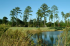 Image of River Pointe Golf Club Albany, GA