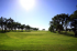 Image of Ross Rogers Golf Course Amarillo, TX