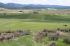 Image of Judith Shadows Golf Course Lewistown, MT