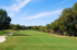 Image of Pecan Hollow Golf Course Plano, TX
