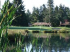 Image of Capitol City Golf Club Lacey, WA