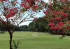 Image of Quail Creek Golf Course Fairhope, AL