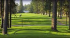 Image of Grays Harbor Country Club Aberdeen, WA