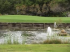 Image of River Creek Golf Course Ahwahnee, CA