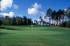 Image of White Pine National Golf Resort Spruce, MI