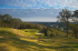 Image of Wolfdancer Golf Club Cedar Creek, TX