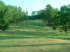 Image of Cape Royale Golf Club Coldspring, TX